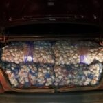 100 Sacks of Garlic Allegedly Smuggled from Guyana Seized in Brazil