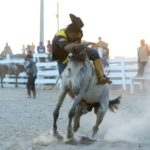 The Rupununi Rodeo: Photos 111-120