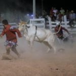 The Rupununi Rodeo: Photos 151-160