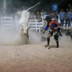 The Rupununi Rodeo: Photos 181-190