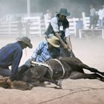 The Rupununi Rodeo: Photos 291-300